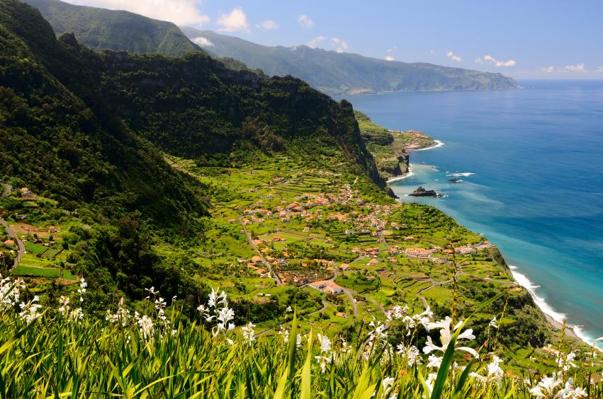 Madeira bietet eine atemberaubende Flora und Fauna in noch unberührter Natur