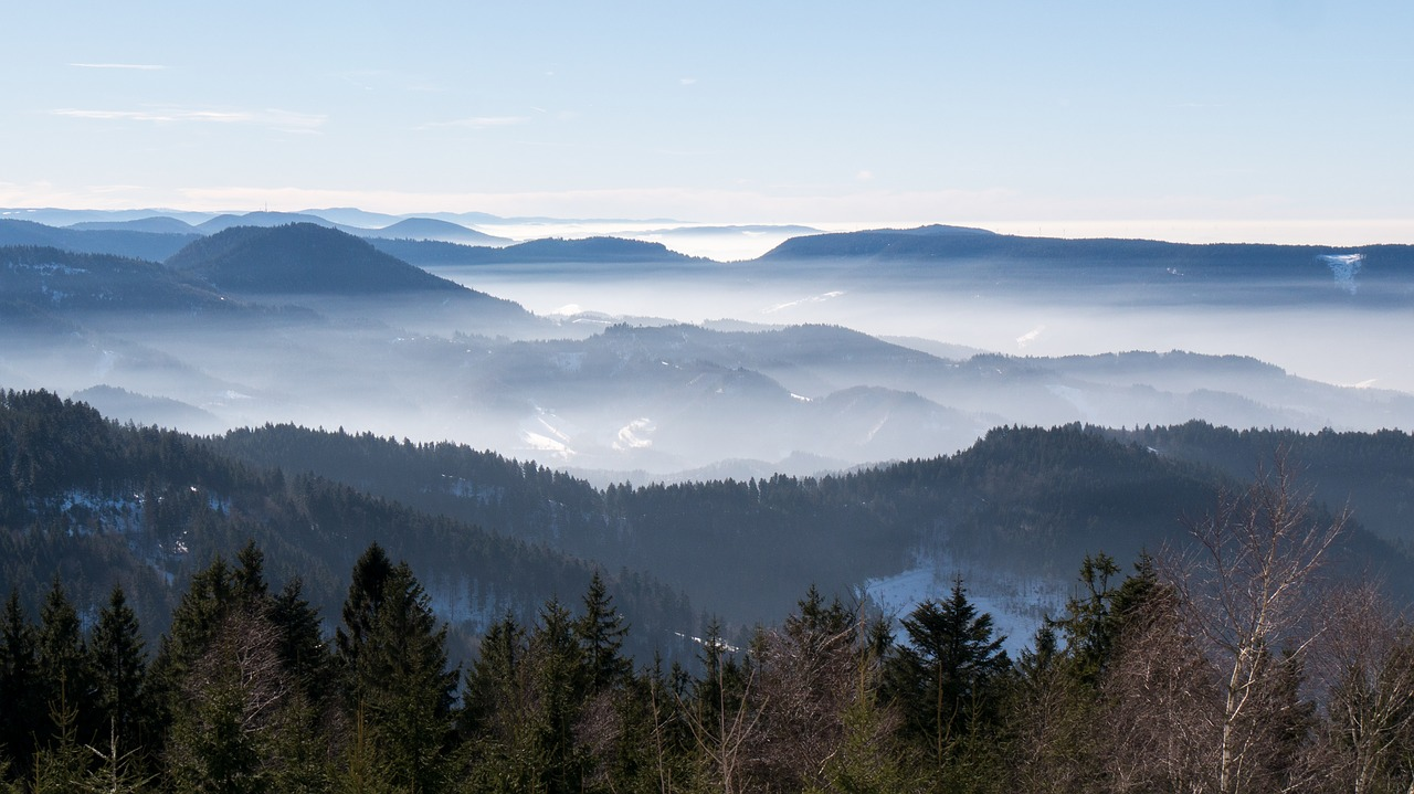 schwarzwald photo